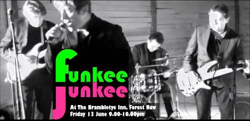 FunkeeJunkee at Brambletye